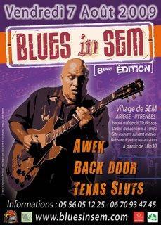 BluesinSem2009